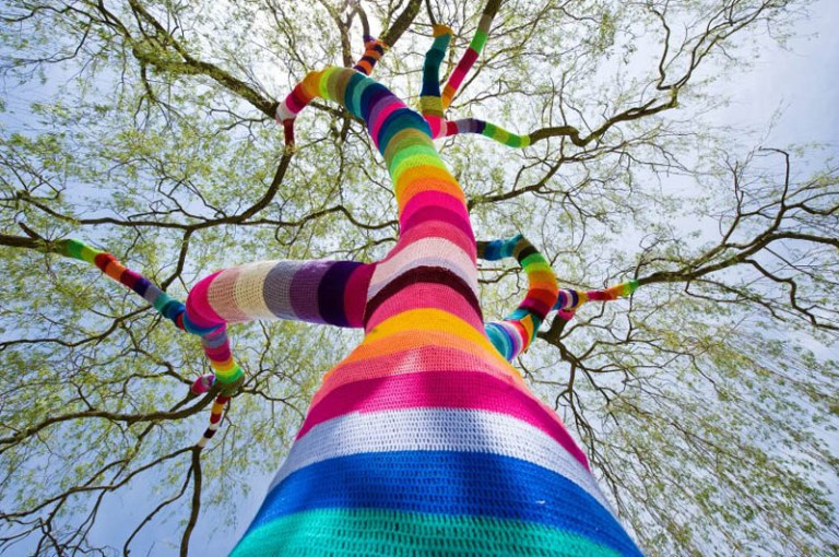 A tree wrapped in colorful yarn for the Barefoot in the City Art Festival